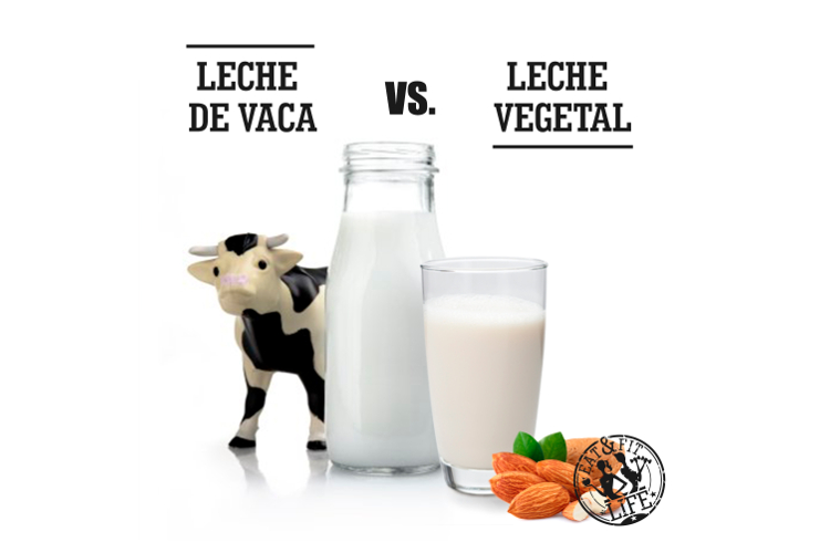 Leche animal vs leche vegetal